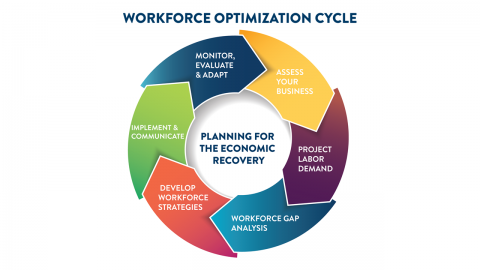 Workforce Optimization Cycle graphic, showing 6 stages: 1.Assess Your Business  2.Project Labor Demand 3.Workforce Gap Analysis 4.Develop Workforce Strategies 5.Implement & Communicate  6.Monitor, Evaluate & Adapt