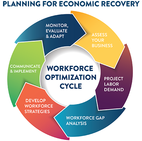 graphic of the Workforce Optimization Cycle showing the 6 stages: Assess Your Business, Project Labor Demand, Workforce Gap Analysis, Develop Workforce Strategies, Communicate & Implement, Monitor, Evaluate & Adapt